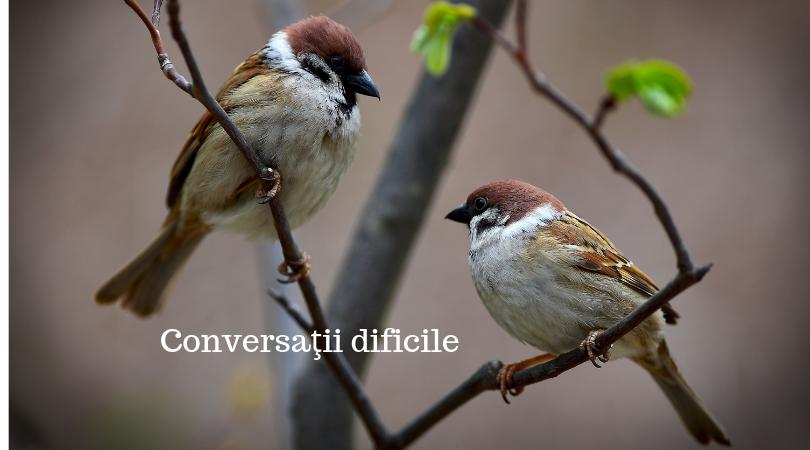 Conversaţii dificile